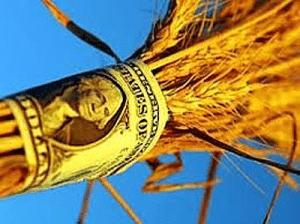 Получение кредита на ЛПХ (личное подсобное хозяйство) – миф или реальность?