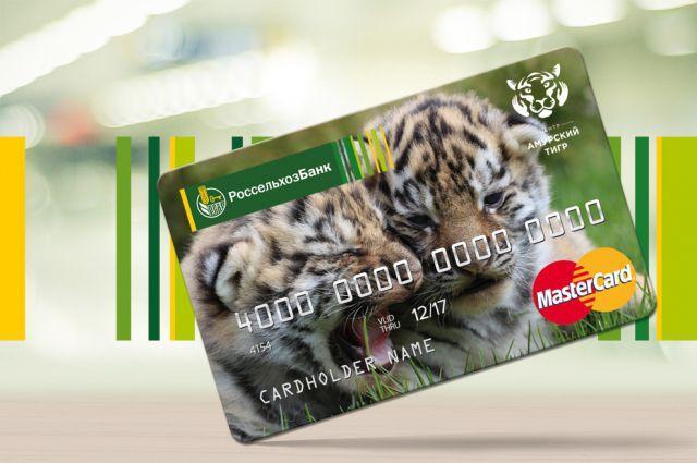 Вклад «Амурский тигр»